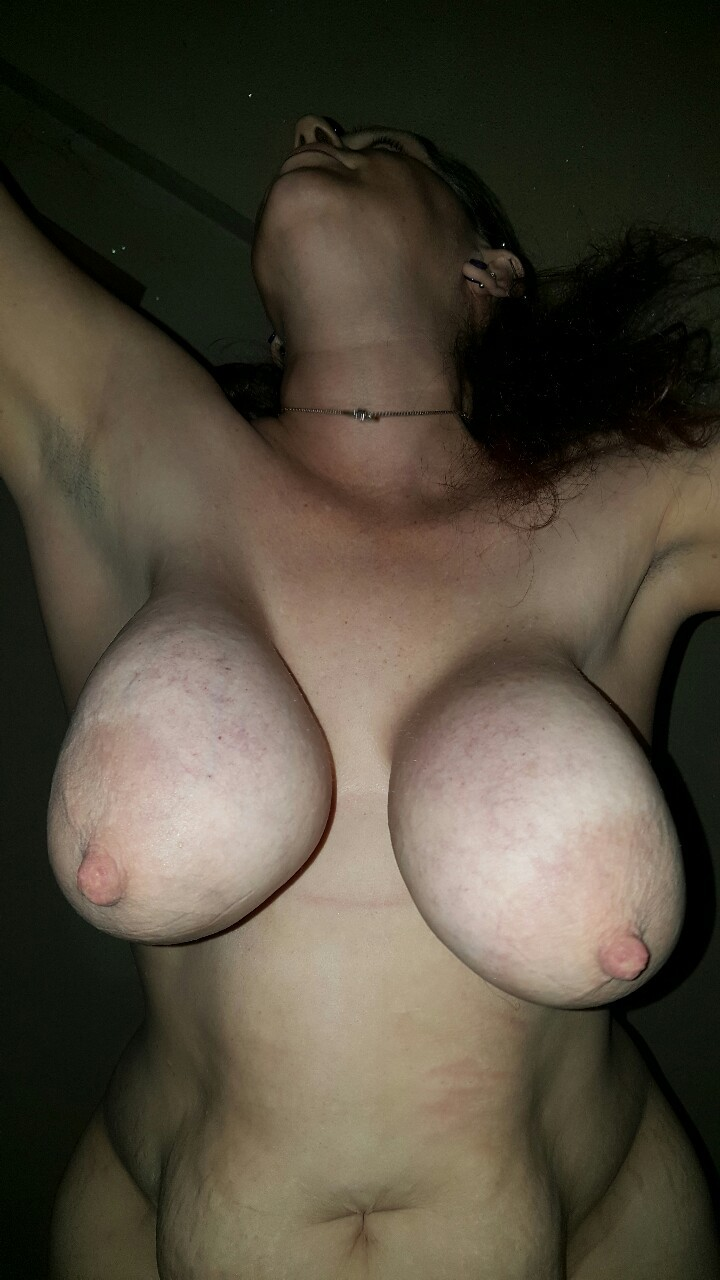 free anal porn picture
